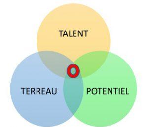 3 éléments favorisant l'innovation